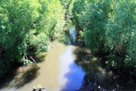 Истоки реки Свияга