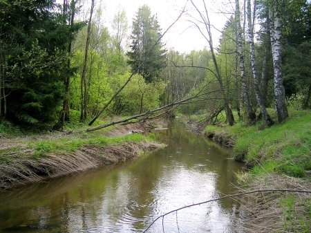 река уча подмосковья рыбалка