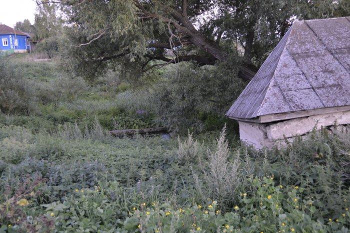 Новости в казахстане в астане видео