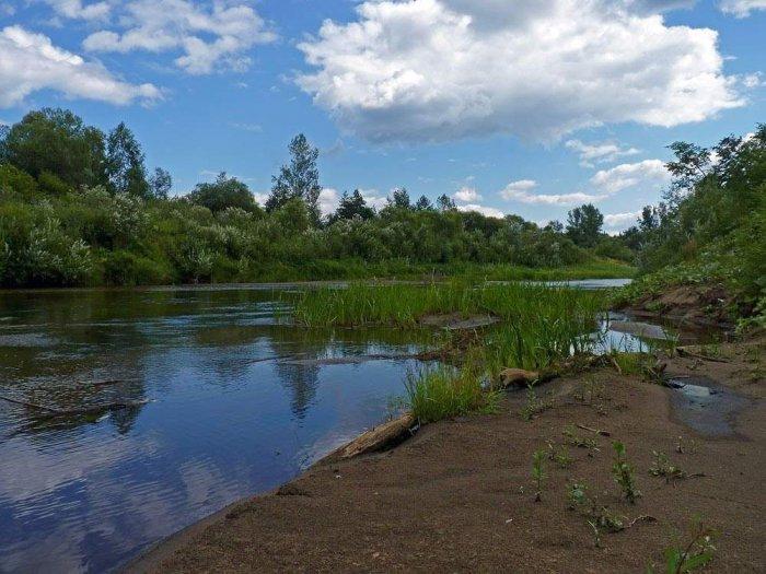 лобань область река фото кировская